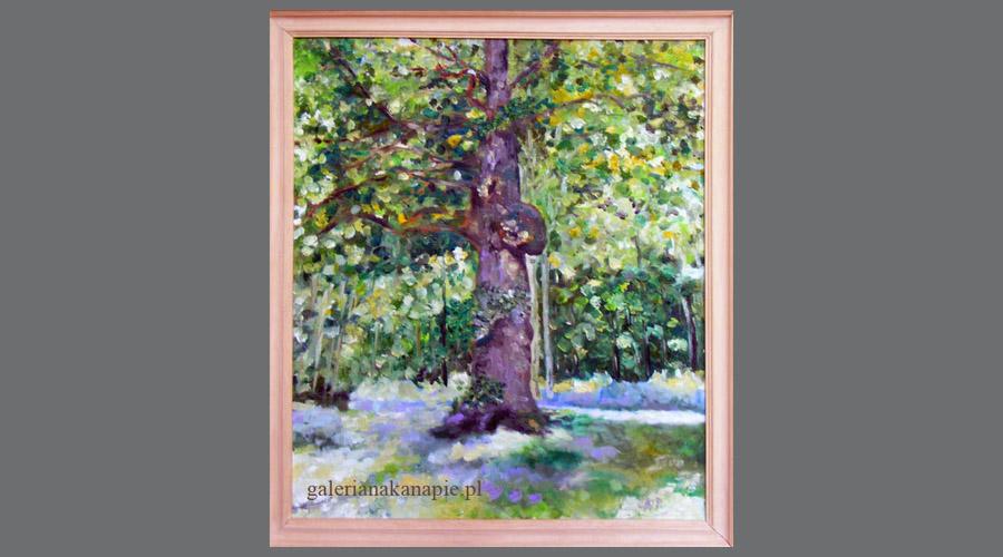Obraz na ścianę: Lato w lesie